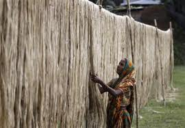 Duty on jute, jute goods import to India withdrawn